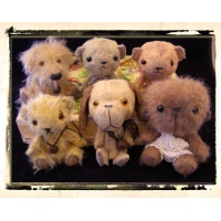 Group of bears