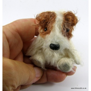 Gin a Jack Russel dog