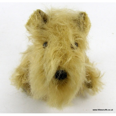 2nd_wheaten5